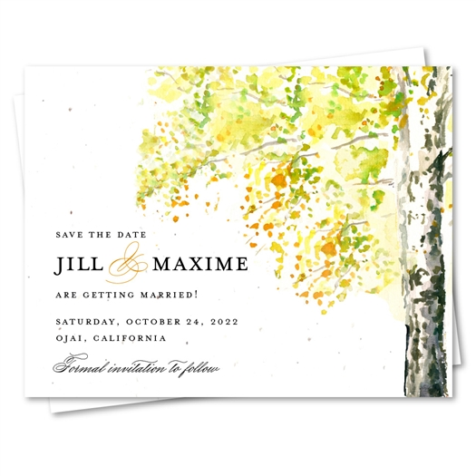 Fall Birch Tree wedding Save the Date Cards with orange and yellow tones
