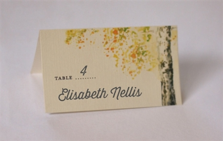 Place Cards Printed