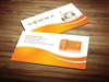 vemma business cards 4
