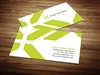 Xyngular business cards 2