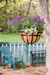 "Living Accents 14"" Hanging Basket 88551"