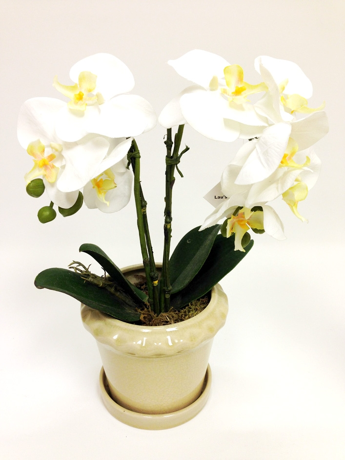 Silk flower arrangement phalaenopsis orchid silk flower 16 inch phalaenopsis orchid silk flower arrangement mightylinksfo Image collections