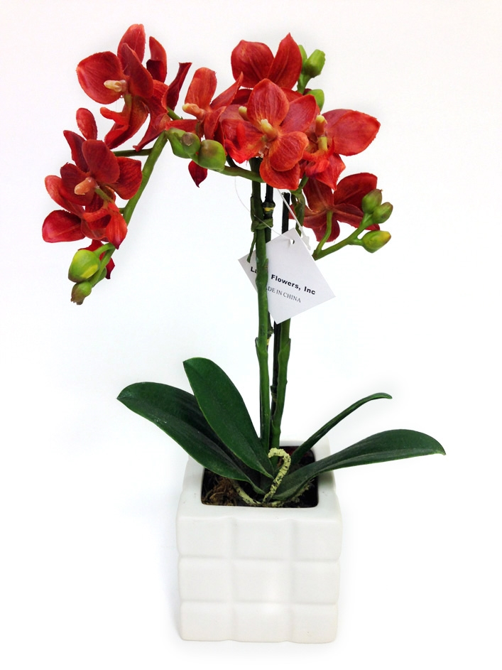Orange Colored Phalaenopsis Orchid Real Touch Artificial