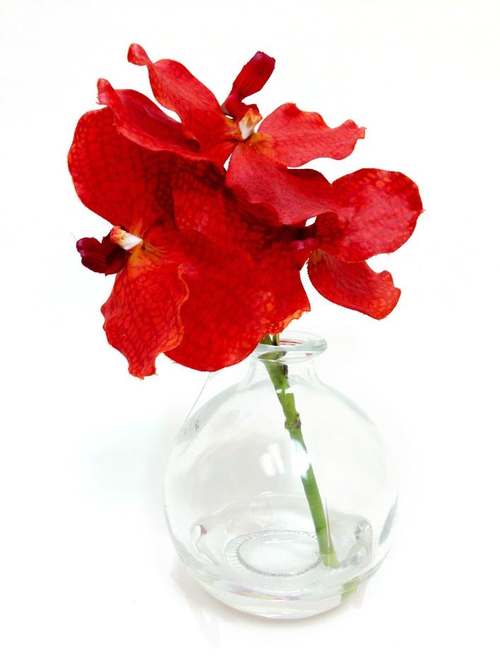 Orange Vanda Real Touch Orchid Artificial Flower Arrangement