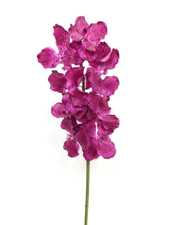 Purple vanda orchid real touch flower stem mightylinksfo
