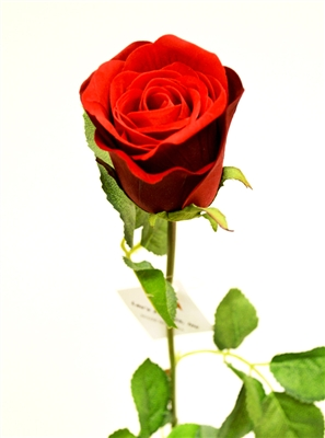 24 Inch Red Rose Silk Flower Stem