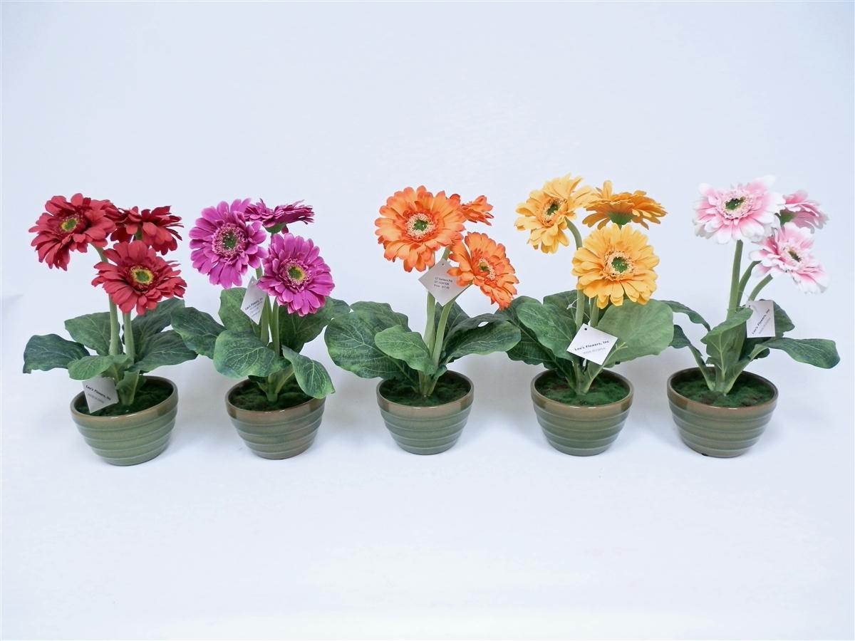 Get Gerbera Daisy Silk Flower 5 Set 13h