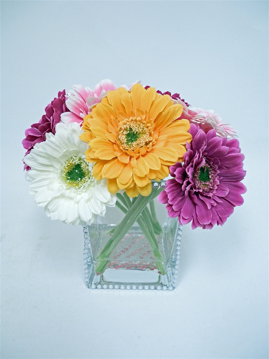 Gifts For Everyone Buy Colorful Daisy Flowers