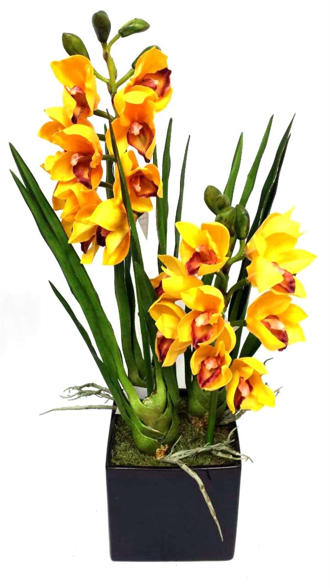 Yellow Cymbidium Orchid Black Ceramic Flower Pot
