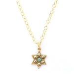 Clara Beau Petite Star of David Swarovski Crystal Necklace - Gold Tone