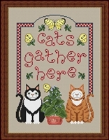 Cats Gather Here