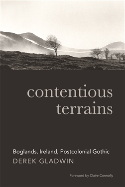 Boglands in the Irish Postcolonial Gothic