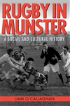 Rugby in Munster