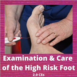 Examination and Care of the High Risk Foot - 2 CE Credits