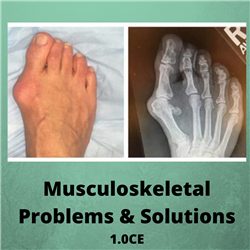 Musculoskeletal Problems and Solutions - 1.0CE