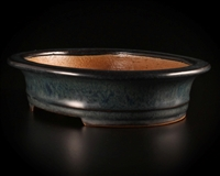 Yamafusa, Tokoname bonsai pot,Artist; Mr. Koie Takehiko