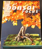 Bonsai Focus