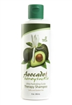 Natural Avocado Honeysuckle Shampoo 8 oz.