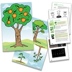 'How to Grow a Brain' Poster and Lesson Bundle