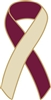 Head & Neck Cancer Awareness Ribbon Pin - Burgundy/Ivory