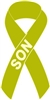 Lymphoma Cancer Awareness Ribbon Pin - Lime Green