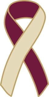 "1"" Cancer Awareness Ribbon Pins - Burgundy/Ivory"