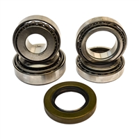 "8.75"" Chrysler 2-Pinion (42) Bearing Kit"