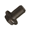 "Ring Gear Bolt T100, Tacoma, Tundra 8.4"", T8S, 98+ TLC100"