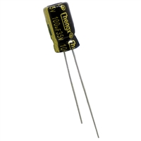 100uF Electrolytic Capacitor