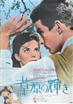 Japanese Movie Poster Splendor In The Grass
