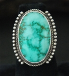 LOVELY PERRY SHORTY CARICO LAKE TURQUOISE RING