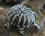 MINIATURE PAPAGO HORSEHAIR TURTLE