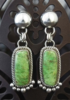LOVELY ARTIE YELLOWHORSE GASPEITE EARRINGS