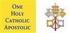 One Holy Catholic Apostolic Vatican Flag Mug