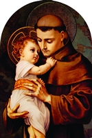 St. Anthony Arched Magnet