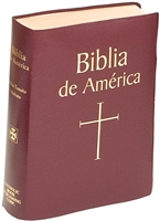 Biblia de America (Spanish Bible), Burgundy Imitation Leather