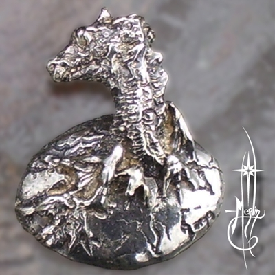 Baby Dragon Amulet