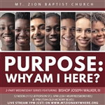 Purpose: Why Am I Here? - part one