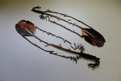 Feather Metal Wall Art Accents