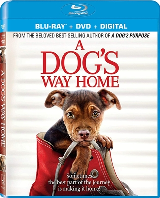 Dog's Way Home 03/19 Blu-ray (Rental)