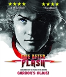 (Pre-order - ships 03/26/19) Life After Flash 03/19 Blu-ray (Rental)