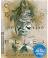 Lord of the Flies Blu-ray (Rental)