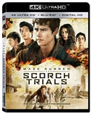 Maze Runner: The Scorch Trials 4K UHD Blu-ray (Rental)