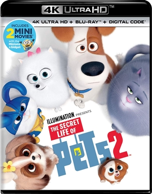 Secret Life of Pets 2 4K UHD 07/19 Blu-ray (Rental)