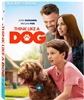 (Releases 2020/06/09) Think Like A Dog 05/20 Blu-ray (Rental)