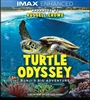 (Releases 2019/12/03) Turtle Odyssey 10/19 Blu-ray (Rental)