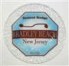 Any Town Beach Badge 9 inch Blue Plate