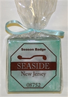 Any Town Beach Badge Seafoam Coasters