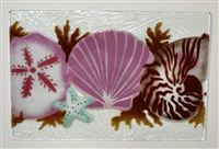 Small Sea Shell Tray (Insert Only)