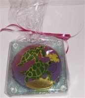 Sea Turtle Coasters